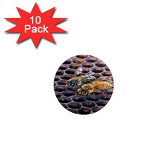 Worker Bees On Honeycomb 1  Mini Magnet (10 pack)