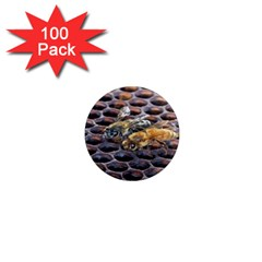 Worker Bees On Honeycomb 1  Mini Magnets (100 Pack)