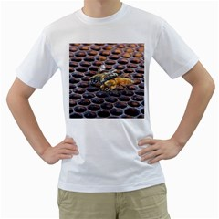 Worker Bees On Honeycomb Men s T Shirt (white) (two Sided)