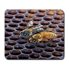 Worker Bees On Honeycomb Large Mousepads