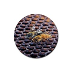 Worker Bees On Honeycomb Rubber Coaster (Round)