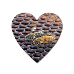 Worker Bees On Honeycomb Heart Magnet