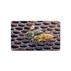 Worker Bees On Honeycomb Magnet (Name Card)