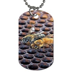 Worker Bees On Honeycomb Dog Tag (one Side)