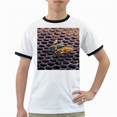 Worker Bees On Honeycomb Ringer T Shirts