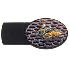 Worker Bees On Honeycomb USB Flash Drive Oval (4 GB)