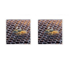 Worker Bees On Honeycomb Cufflinks (square)