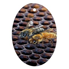 Worker Bees On Honeycomb Oval Ornament (Two Sides)
