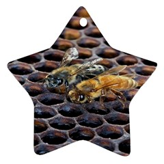 Worker Bees On Honeycomb Star Ornament (Two Sides)