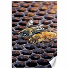 Worker Bees On Honeycomb Canvas 12  X 18