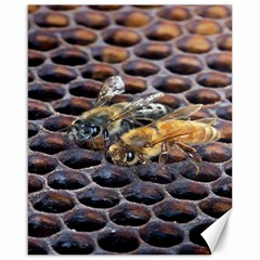 Worker Bees On Honeycomb Canvas 16  X 20