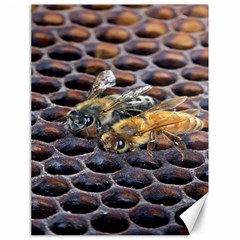 Worker Bees On Honeycomb Canvas 18  X 24