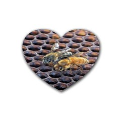 Worker Bees On Honeycomb Rubber Coaster (Heart)