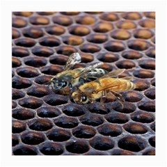 Worker Bees On Honeycomb Medium Glasses Cloth