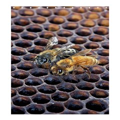 Worker Bees On Honeycomb Shower Curtain 66  x 72  (Large)