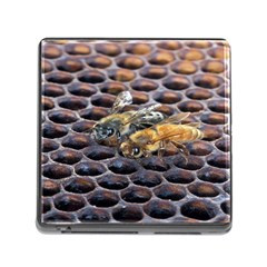 Worker Bees On Honeycomb Memory Card Reader (square)