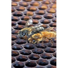 Worker Bees On Honeycomb 5.5  x 8.5  Notebooks