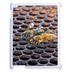 Worker Bees On Honeycomb Apple Ipad 2 Case (white)