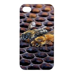 Worker Bees On Honeycomb Apple Iphone 4/4s Hardshell Case