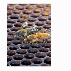 Worker Bees On Honeycomb Large Garden Flag (two Sides)