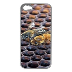Worker Bees On Honeycomb Apple Iphone 5 Case (silver)