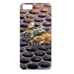 Worker Bees On Honeycomb Apple iPhone 5 Seamless Case (White)