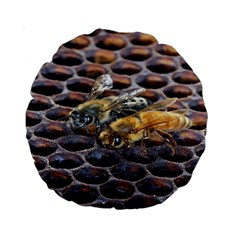 Worker Bees On Honeycomb Standard 15  Premium Round Cushions