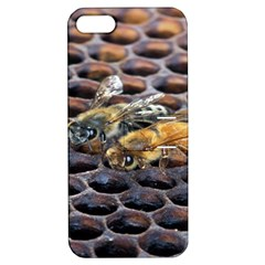 Worker Bees On Honeycomb Apple iPhone 5 Hardshell Case with Stand