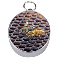Worker Bees On Honeycomb Silver Compasses