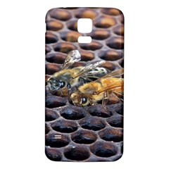 Worker Bees On Honeycomb Samsung Galaxy S5 Back Case (White)