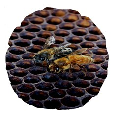 Worker Bees On Honeycomb Large 18  Premium Flano Round Cushions