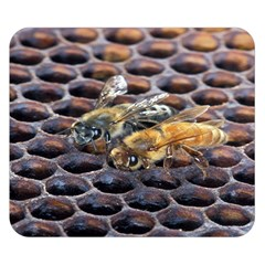 Worker Bees On Honeycomb Double Sided Flano Blanket (small)