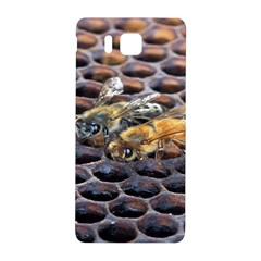 Worker Bees On Honeycomb Samsung Galaxy Alpha Hardshell Back Case