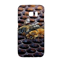 Worker Bees On Honeycomb Galaxy S6 Edge
