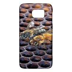 Worker Bees On Honeycomb Galaxy S6