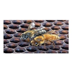 Worker Bees On Honeycomb Satin Shawl