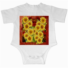 Sunflowers Flowers Abstract Infant Creepers