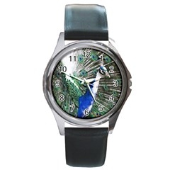 Animal Photography Peacock Bird Round Metal Watch