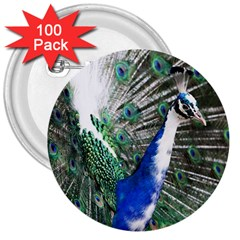 Animal Photography Peacock Bird 3  Buttons (100 Pack)