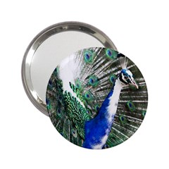 Animal Photography Peacock Bird 2 25  Handbag Mirrors