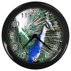 Animal Photography Peacock Bird Wall Clocks (black)