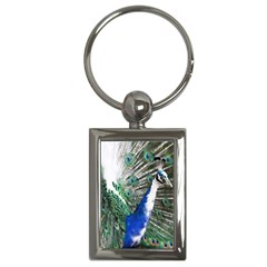 Animal Photography Peacock Bird Key Chains (Rectangle)