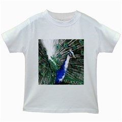 Animal Photography Peacock Bird Kids White T Shirts