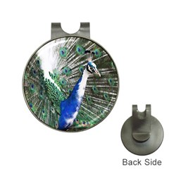 Animal Photography Peacock Bird Hat Clips With Golf Markers