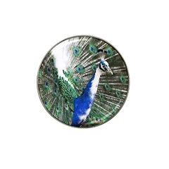 Animal Photography Peacock Bird Hat Clip Ball Marker (10 Pack)