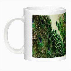 Animal Photography Peacock Bird Night Luminous Mugs