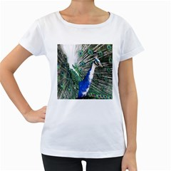 Animal Photography Peacock Bird Women s Loose Fit T Shirt (white)
