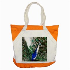 Animal Photography Peacock Bird Accent Tote Bag