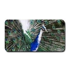 Animal Photography Peacock Bird Medium Bar Mats