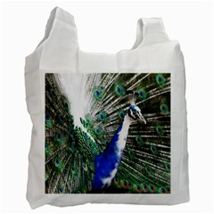 Animal Photography Peacock Bird Recycle Bag (one Side)